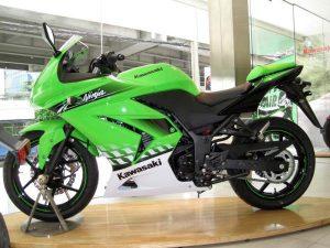 Kawasaki Ninja 250 2010